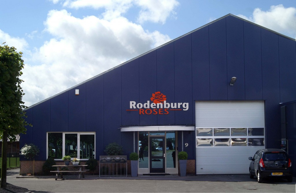 Rodenburg gevel